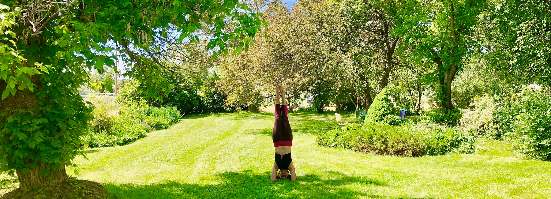 Yoga at the Farm | Pastures of Plenty | Farm in Boulder County